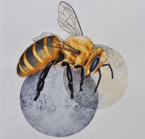 Prime Bees Artwork Watercolor Bee Artwork